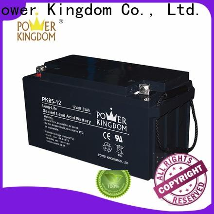 Power Kingdom advanced plate casters top deep cycle batteries manufacturers solar and wind power system