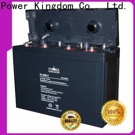 Power Kingdom good quality dry charge agm Supply electric toys