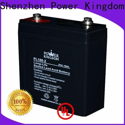 Power Kingdom vrla battery life expectancy for business electric toys