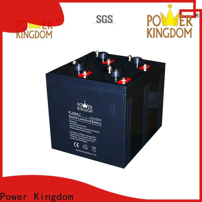 Power Kingdom Best best battery charger for agm battery factory price fire system