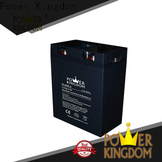 Power Kingdom Best agm battery uk factory price fire system