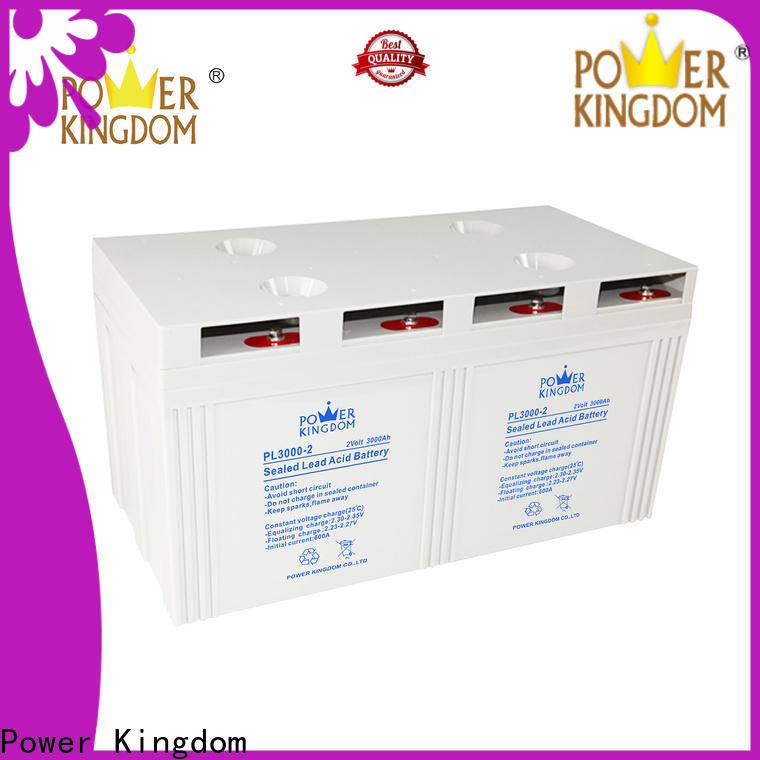 Power Kingdom tubular gel batteries company electric toys