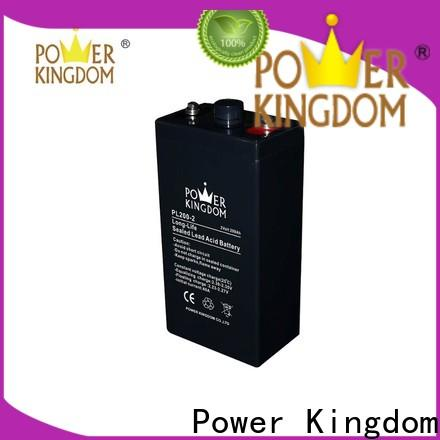 Power Kingdom agm absorbed glass mat batteries factory electric toys