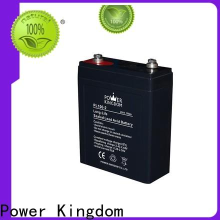 Power Kingdom New gel cell charger for business communication equipment