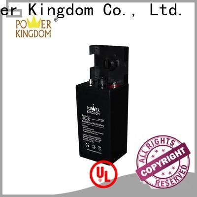 Power Kingdom Best agm battery charging voltage factory price electric toys