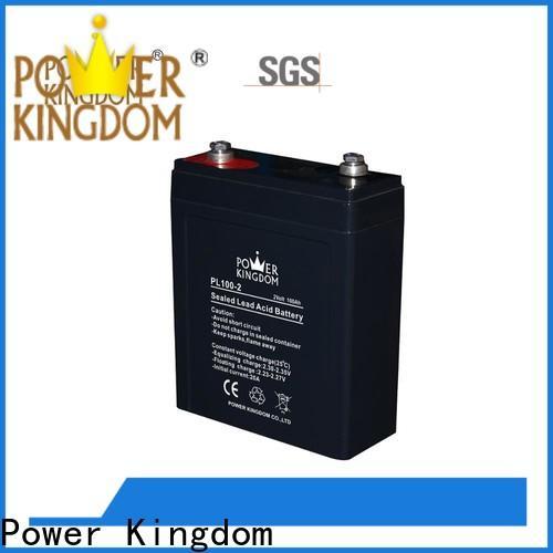 Power Kingdom 12v 33ah agm battery factory electric toys