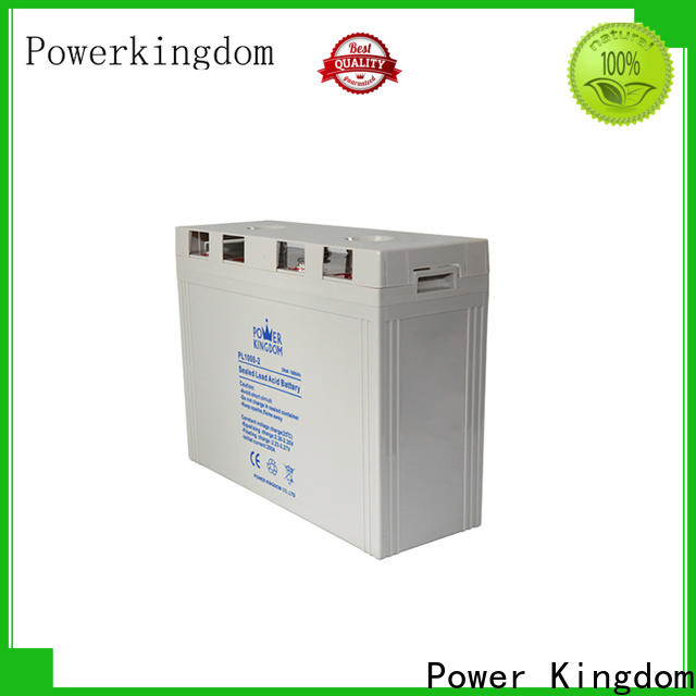 Power Kingdom 12v vrla factory electric toys