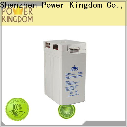 Power Kingdom Top premium agm battery company electric toys