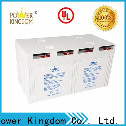 Power Kingdom New agm battery pack directly sale communication equipment