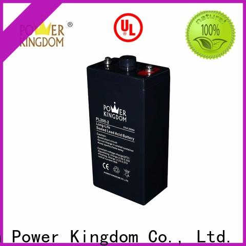 Power Kingdom 12v battery types factory electric toys