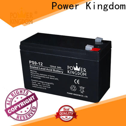 Power Kingdom no electrolyte leakage best battery charger for agm batteries personalized wind power systems