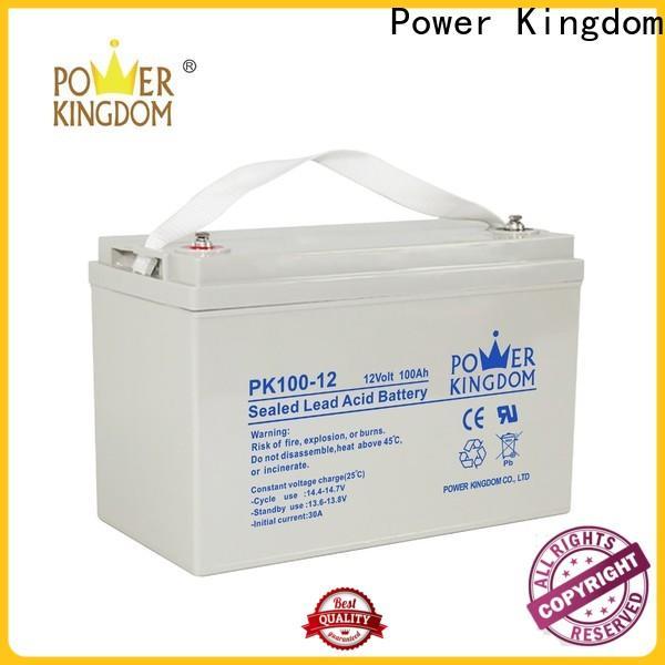 Power Kingdom High-quality gel battery maintenance wholesale