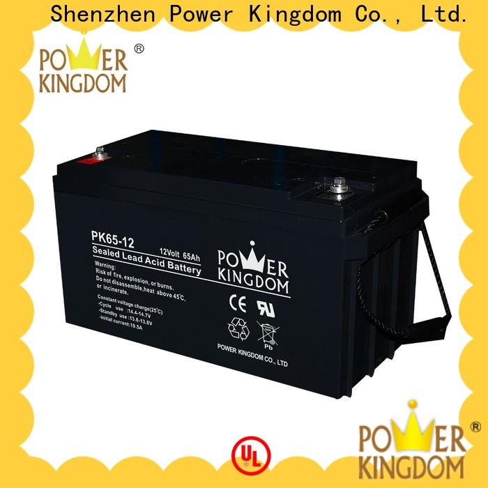 Power Kingdom Latest gel filled battery wholesale vehile and power storage system