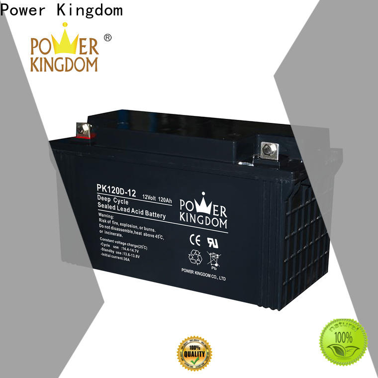 Power Kingdom agm batteries for solar storage personalized vehile and power storage system