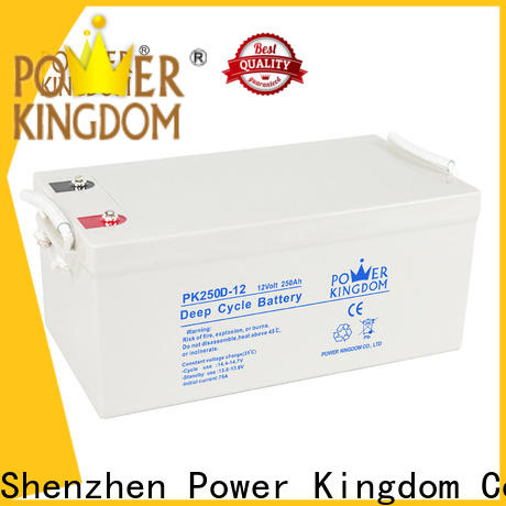 Power Kingdom Top deep cycle automotive battery factory price deep discharge device