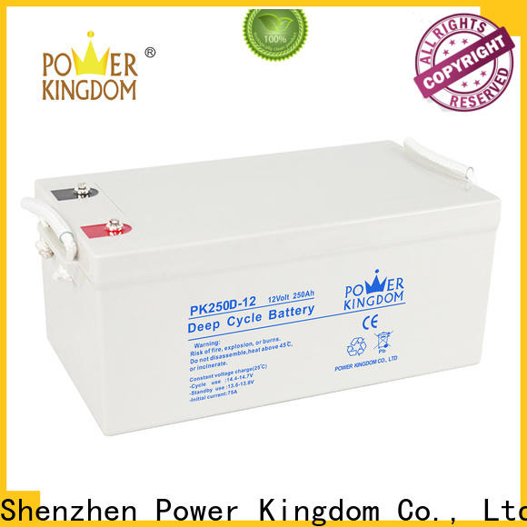 Power Kingdom Custom absorbent glass mat battery for business wind power systems
