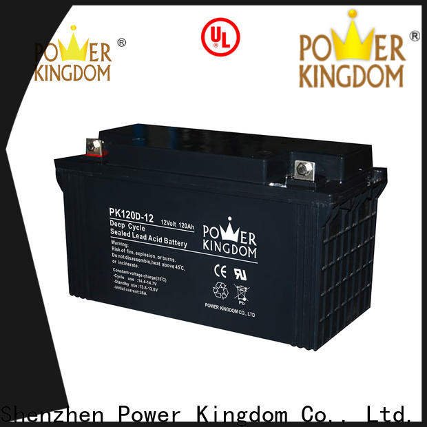 Power Kingdom 12 agm battery personalized