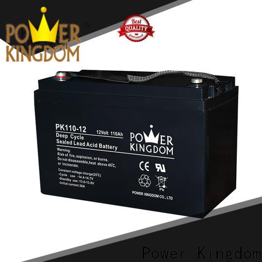 Power Kingdom New best agm battery brand wholesale
