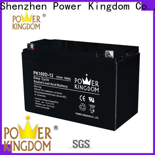 Power Kingdom Latest compact deep cycle battery personalized vehile and power storage system