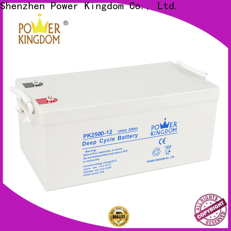 High-quality 120 amp deep cycle battery supplier deep discharge device