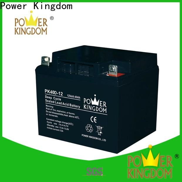 Power Kingdom New maintenance free battery Supply deep discharge device
