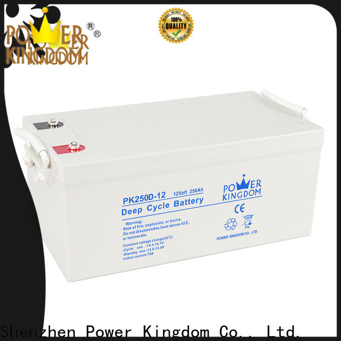 Power Kingdom high ah deep cycle battery for business wind power systems