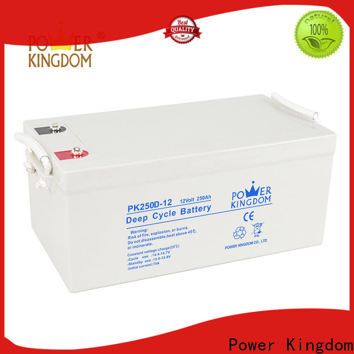 Power Kingdom agm battery technology wholesale vehile and power storage system