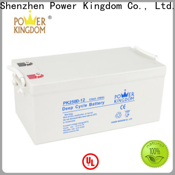 Power Kingdom deep cycle sealed lead acid battery manufacturers vehile and power storage system