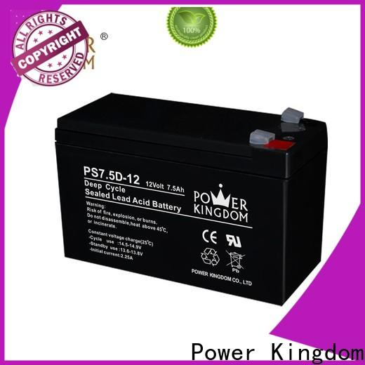 Power Kingdom poles design 8d deep cycle battery personalized deep discharge device