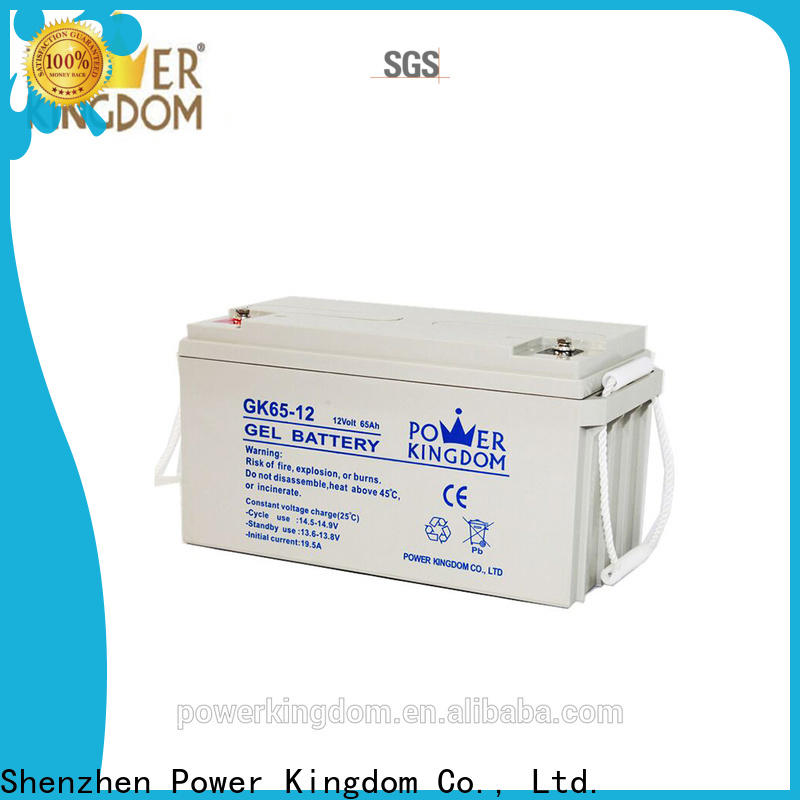 Power Kingdom Latest deep cell battery maintenance supplier deep discharge device