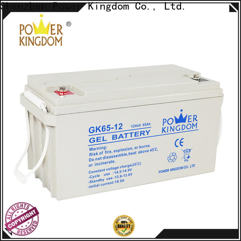 Power Kingdom small 12v deep cycle marine battery factory vehile and power storage system
