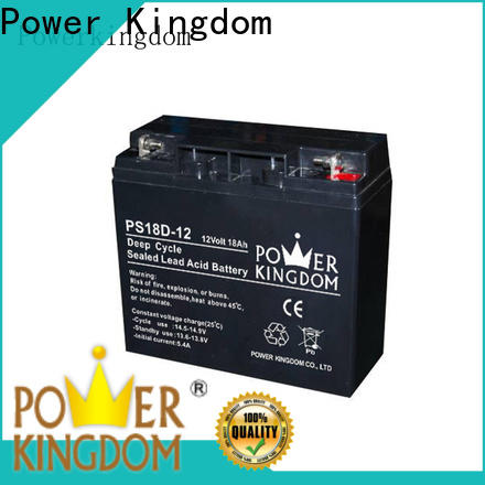 Power Kingdom cheap agm batteries factory price deep discharge device