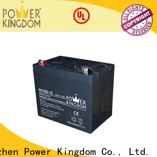 Power Kingdom best agm deep cycle rv battery company deep discharge device