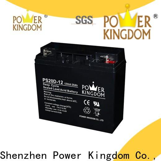 Power Kingdom rv marine deep cycle battery personalized deep discharge device