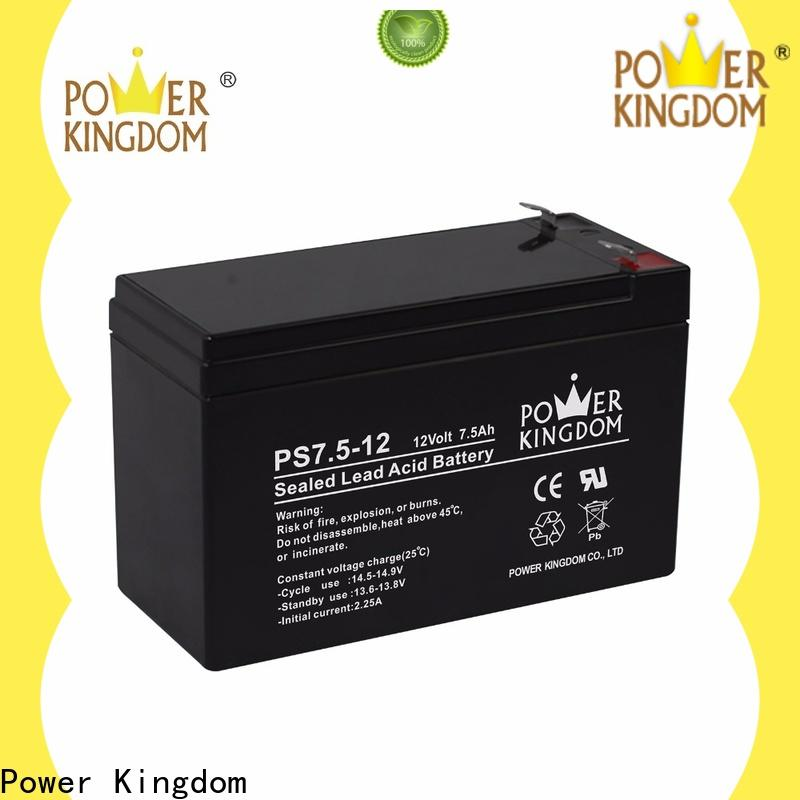 Power Kingdom High-quality agm battery life factory price deep discharge device