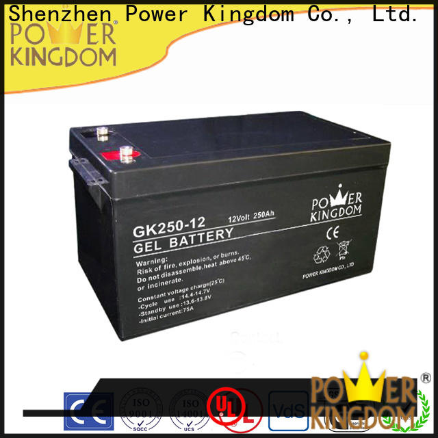 Power Kingdom deep cell batteries for sale company deep discharge device