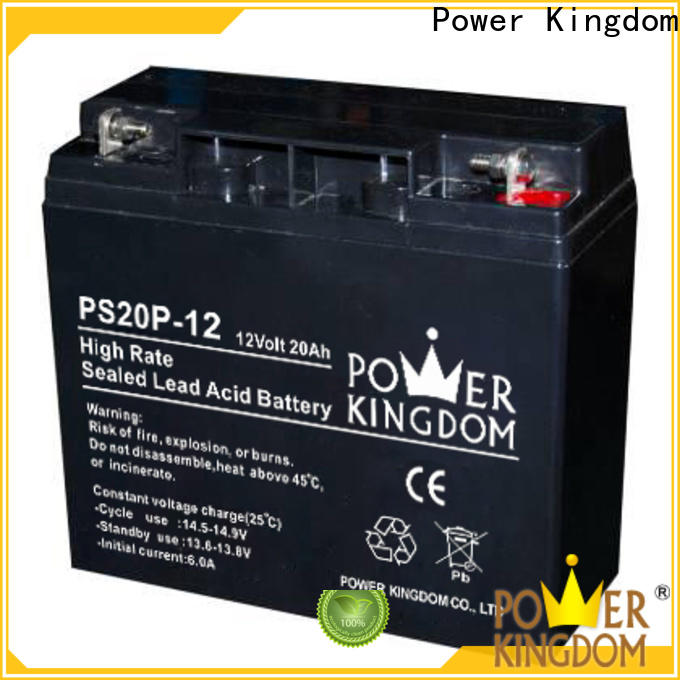 Power Kingdom good quality 2v agm battery factory electric toys