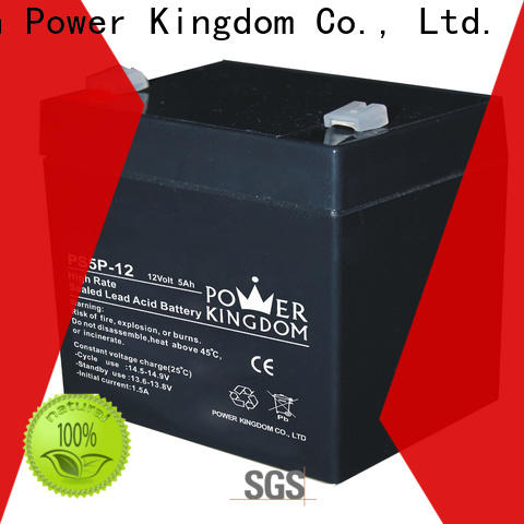 Power Kingdom Top optima gel battery for business electric toys