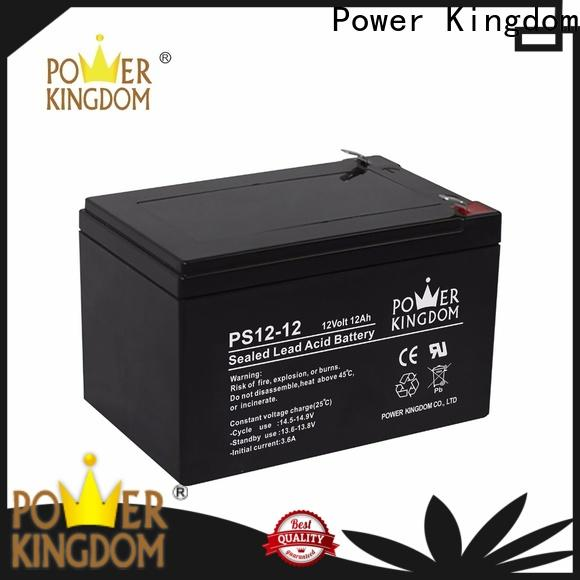 Power Kingdom 12v gel cell rechargeable battery factory price electric toys