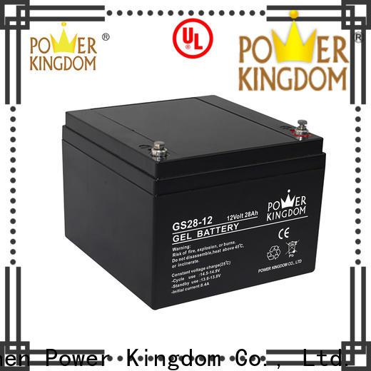 Power Kingdom High-quality lead acid battery backup with good price medical equipment
