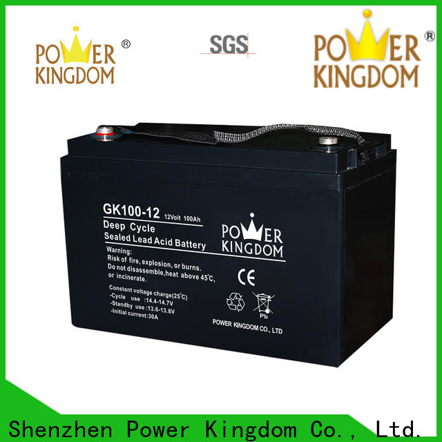Power Kingdom high consistency ups lead acid with good price wind power system