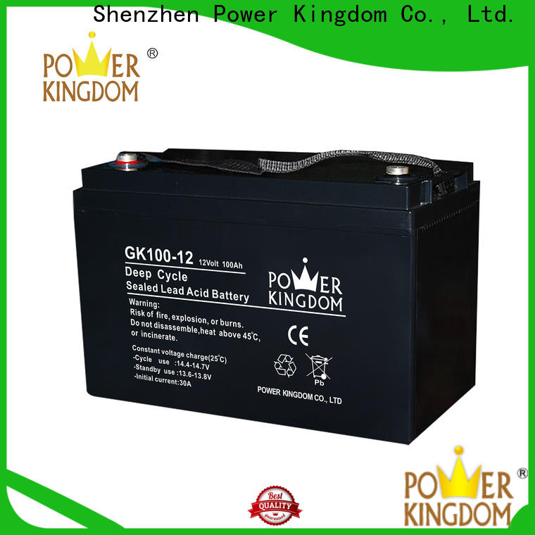 Power Kingdom lead acid battery terminal types with good price medical equipment