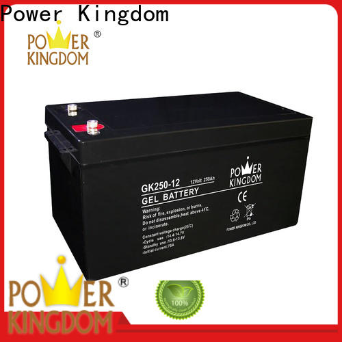 Power Kingdom battery sulfate factory medical equipment