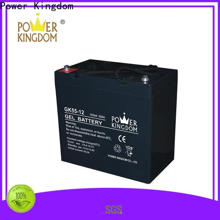 Power Kingdom high consistency lead acetate battery Supply medical equipment