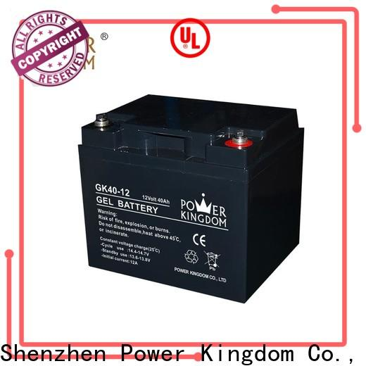 Power Kingdom New sealed maintenance free rechargeable battery for business medical equipment