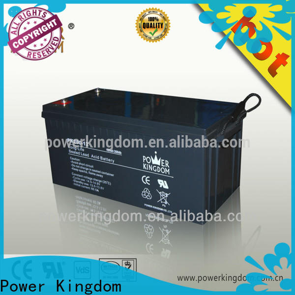 Power Kingdom Custom positive plate of lead acid battery with good price wind power system