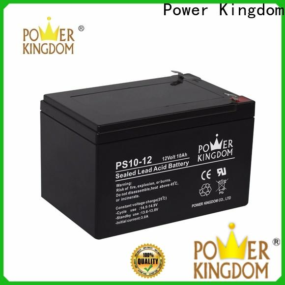 Power Kingdom High-quality deep cycle sealed lead acid battery personalized vehile and power storage system