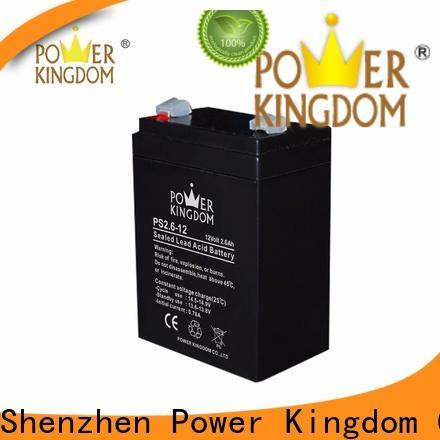 Power Kingdom Custom wholesale deep cycle batteries factory vehile and power storage system