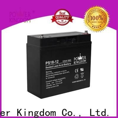Power Kingdom Custom agm truck battery factory deep discharge device