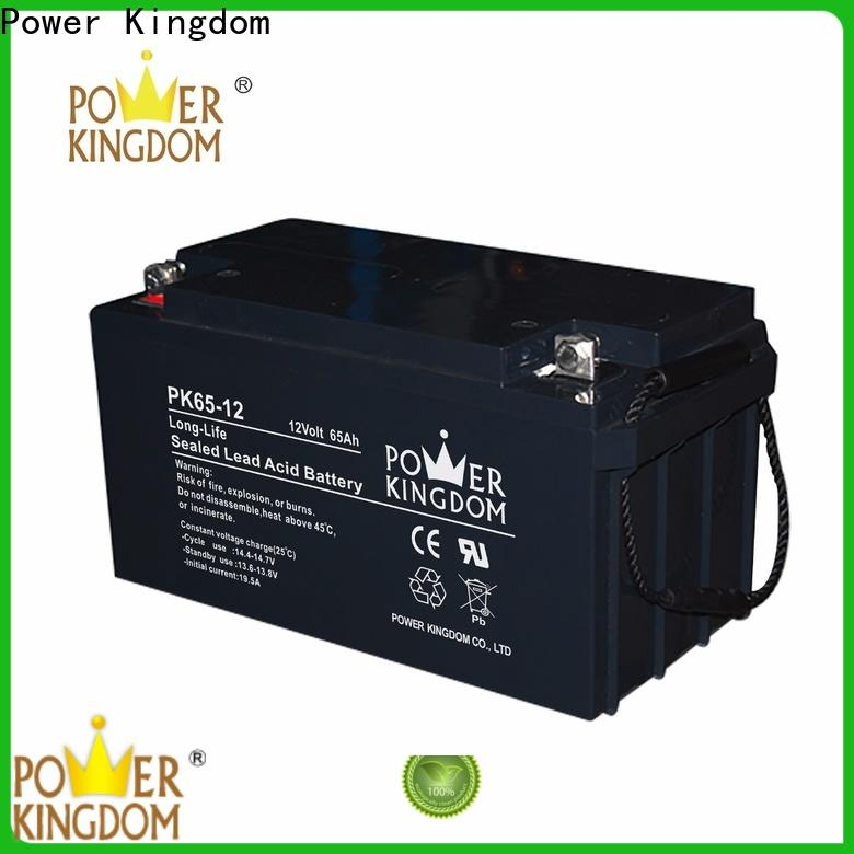 Power Kingdom cycle 120 agm battery factory price vehile and power storage system